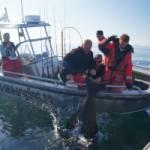 Монстры для экстремалов. Рыбалка в Норвегии