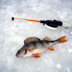 Готовимся к рыбалке по первому льду