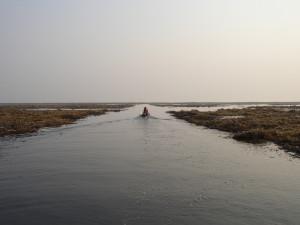 Южная Ладога. Нерестилища Волховской губы 7 километр