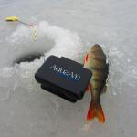 Электронный помощник рыболова — система AQWA – Vu