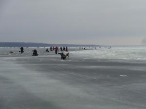 Рыбаки на корюшку в финском заливе