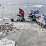 Мотособаки для зимней рыбалки