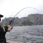 Нормы вывоза рыбы за пределы Норвегии