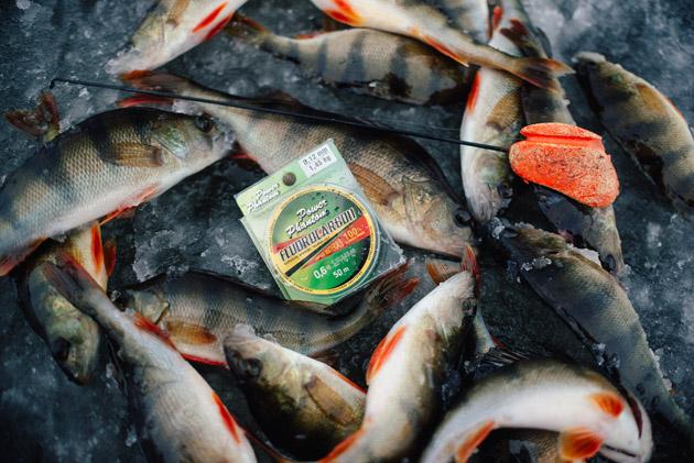 Леска флюорокарбон и ее использование в рыбалке